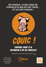 affiche Couic2018