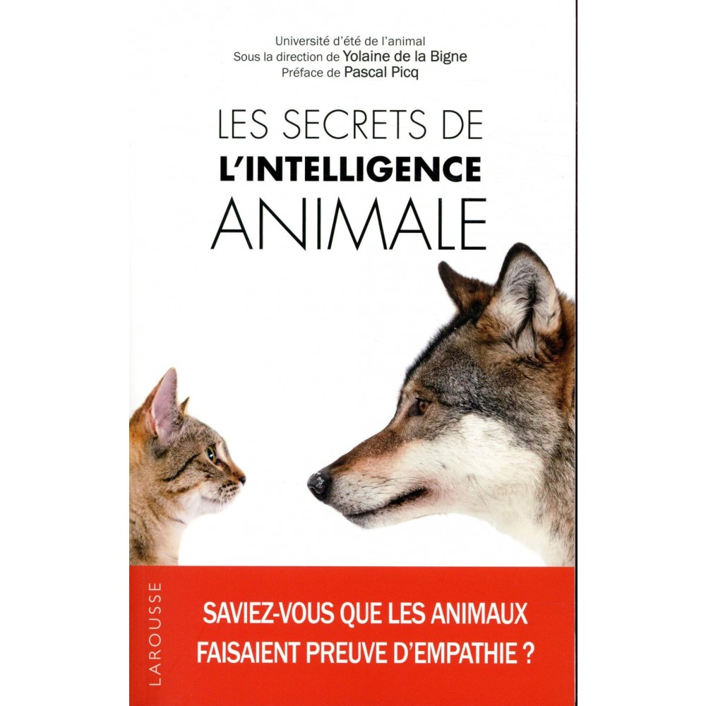 Le secret de lintelligence animale