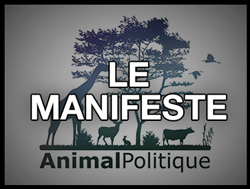 Le manifeste Animal Politique
